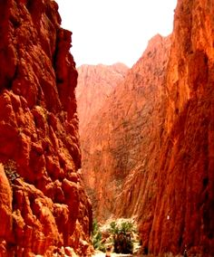 Todra Gorge. #Morocco is the setting of Garment of Shadows, a Mary Russell and #SherlockHolmes #mystery by Laurie R. King.