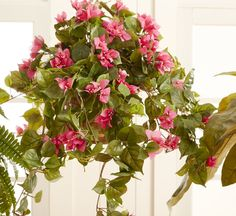 3 Pleasing Cool Tips: Artificial Flowers For Sale artificial plants seeds.Artificial Grass In Room artificial flowers pictures.Artificial Flowers For Sale. Small Artificial Plants, Artificial Plant Wall, Fake Plants, Artificial Flowers, Potted Plants, Hanging Plants Outdoor, Indoor Plants, Indoor Trees, Indoor Flowers