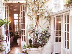 another pic of christian lacroix's apartment in paris...