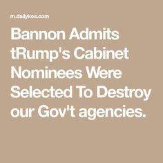 Bannon Admits tRump's Cabinet Nominees Were Selected To Destroy our Gov't agencies.