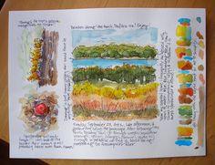 Sketchbook Wandering : Audubon Sketch Journal Project #1