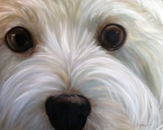 Items similar to NEEDLEPOINT CANVAS PRINT Westie West Highland Terrier Dog Art by Mary Sparrow white puppy face canine portrait painting on Etsy