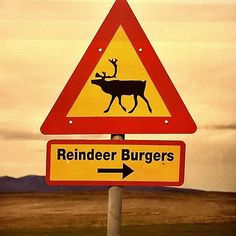 How about reindeer burgers? That warning sign advices travelers at Helsinki Airport.  #reindeer  #reindeerfood #burger #burgerfi #helsinkisecret #helsinki #helsinkiairport #finland #lapland #foodie #foodsign #sign #travelblogger #timokiviluoma #airports #airportlife #poro