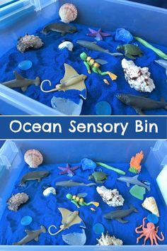 Ocean Sensory Bin #sensory #sensoryplay #sensoryactivities #ocean #toddlers #preschool #preschoolers #prek #homeschool #homeschooling #classroom #daycare #affiliate