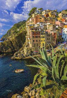 Rio Maggiore | Cinque Terre, Italy | UFOREA.org | the trip you want. The help they need.