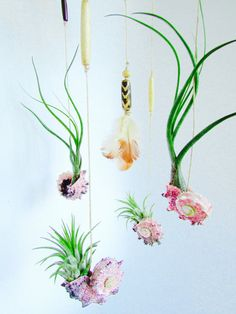 Air Plant Mobile  Baby Nursery Room Dream by AmbientBotanicals