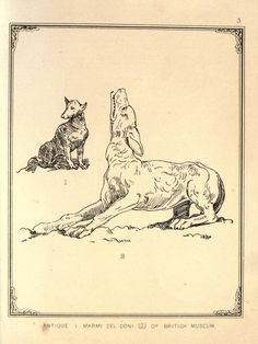 The varieties of dogs, as they are found in old sculptures, pictures, engravings, and books. - Biodiversity Heritage Library