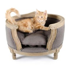 Reward this with our George Dog Bed. Pet Beds, Dog Bed, Louis Seize, Classic Wardrobe, Animal House, Tub Chair, Bassinet, Belgium, Charcoal