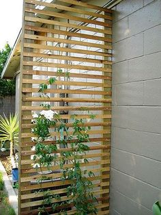 DIY garden trellis projects The gardening glove - For the winemaking of . DIY garden trellis projects The gardening glove – For the vinification of vegetables it is easy t Diy Trellis, Garden Trellis, Privacy Trellis, Wood Trellis, Privacy Screens, Outdoor Privacy, Trellis Fence, Trellis Design, Deck Trellis Ideas