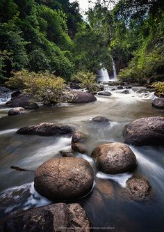 Heo Suwat waterfall, Khao Yai National Park, Saraburi Province. Khao Yai National Park, National Parks, Tropical Beaches, Beautiful Waterfalls, Koh Samui, Island Beach, Landscape Photography, Amazing, Homeland
