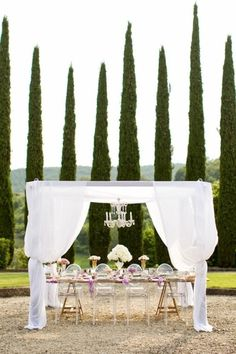 i want to eat dinner here <3 cypress trees backdrop