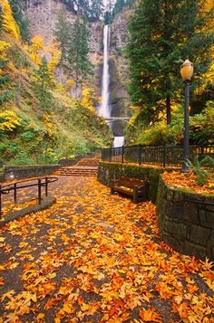 Autumn at Multnomah Falls, OR - Already can't wait for autumn again...