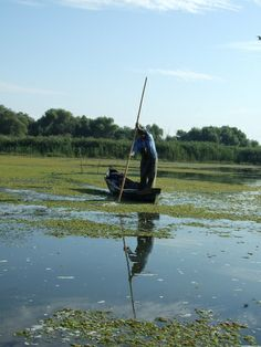 Fisherman on Lake Fortuna - Danube Delta Danube Delta, Romania, River, Explore, Mountains, World, The World, Rivers, Bergen