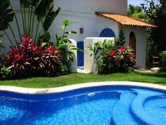 Pool, outdoor shower and bathroom