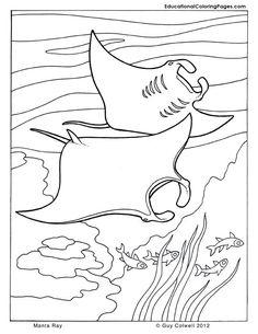 fish coloring, sea animals coloring, ocean animals coloring