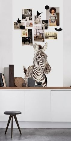 Zebra - Groovy Magnets