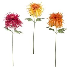 Crisantemos de Sia Home Fashion. http://www.treboleregalos.com/flor-en-rama/28246-crisantemos-sia-home-fashion-de-76-cm-3533590100982.html