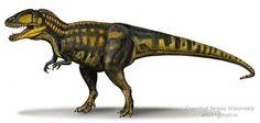 "Name: Carcharodontosaurus (Greek for ""great white shark lizard""); pronounced CA. Reptiles, Mammals, Animal Tails, Spinosaurus, Prehistoric Creatures, Prehistoric Wildlife, Jurassic Park World, Illustration Techniques, Dinosaur Art"