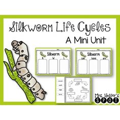 31 Best Silk worms images in 2016 | Silk, Life cycles