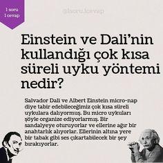 Interesting Information, Albert Einstein, Personal Development, Psychology, Education, Memes, Instagram Posts, Quotes, Charts