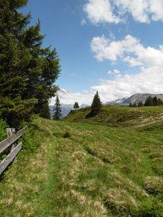 Die schönsten Plätze lassen sich bei einer Wanderung in der Ferienregion Lenzerheide entdecken.   www.hotelauszeit.ch www.facebook.com/hotelauszeit www.instagram.com/hotelauszeit