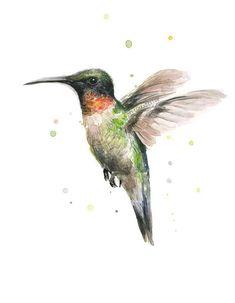 Kolibri Aquarell Kunstdruck Ruby Throated von OlechkaDesign