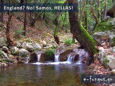 Όλη η γη σε μία χώρα ...την Ελλάδα! Δείτε τον Παράδεισο επί της Γης! 47 ΑΠΙΘΑΝΕΣ ΦΩΤΟ.. Samos, Exotic Places, Natural, Greece, Beautiful Places, England, Country, Pictures, Travel