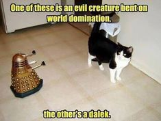 The Cat vs. the Dalek