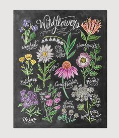Wildflower Field Guide - Print