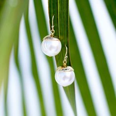Perfectly understated: The must-have Single Pearl French Wire Earrings  #pearl #pearls #earrings #jewelry #stjohnknits #accessories