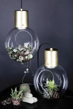 It gives light and life to your rooms and to the plants it houses. adorable both suspended and as table top; Cable: Black textil m with switch and europlug. Spot Design, Led Filament, Mini, Luminaire Design, Light Of Life, Eco Friendly House, Glass Ball, Messing, Transparent