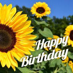 Happy Birthday Sunflower, Happy Birthday Flowers Wishes, Happy Birthday Greetings Friends, Happy Birthday Beautiful, Happy Birthday Images, Happy Birthday Cards, Card Birthday, Birthday Posts, Birthday Board
