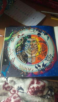 Johanna Basford Owls Coloring Owl Tawny