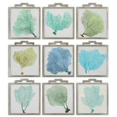 Blue and Green Sea Fan Prints - Set of 9  OR MAKE THEM YOURSELF FOR NEXT TO NOTHING!  #Beach House Decor