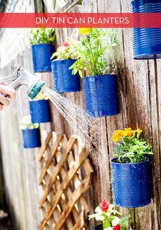 DIy Tin can garden