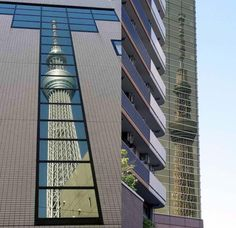 Tokyo Sky Tree appeared in the walls of 2 buildings.