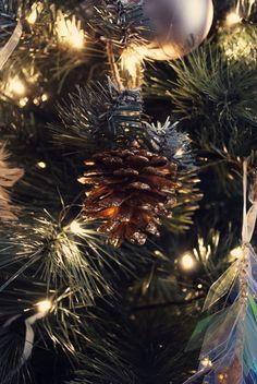 Christmas Pine Cones, Christmas Tree, Christmas 2019, Holiday Decor, Teal Christmas Tree, Xmas Trees, Christmas Trees, Xmas Tree