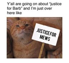 JUSTICE FOR MEWS!!!