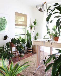 Now in the spotlight: your urban jungle! ✨ :@livingpattern #urbanjunglebloggers