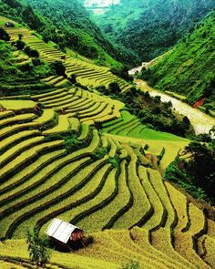 Comparateur de voyages http://www.hotels-live.com : @Easyvoyage - Terraces rice field in Northwest of Vietnam Just stunning! #myeasyvoyage #voyage #travel #travelgram #traveler #phototravel #holidaytravel #holidays #escape #visit #vacances #vacation #world #destination #wanderlust #instatravel #nature #ricefield #Vietnam #Asie #Asia #ig_asia #wonderful_places #passionpassport #landscape Hotels-live.com via https://www.instagram.com/p/BB67kCDSYeZ/ #Flickr via Hotels-live.com…