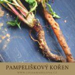 Korn, Asparagus, Herbs, Vegetables, Health, Detox, Herbalism, Herbal Medicine, Studs