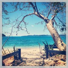 Whitsundays  great reef barrier :)) paradise!!