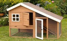 Chicken coop or rabbit hutch