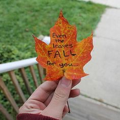 """This is a good idea-- """"I'm going to write on leaves this fall and set them free in the wind."""""""