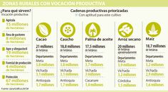 Fin del conflicto potenciará los cultivos de cacao y caucho en más de 26 millones de hectáreas