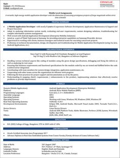 Click Here To Download This Information Security Resume Template