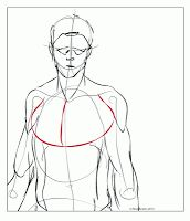 Busto_sf_back_01 | Anatomy Lessons | Pinterest