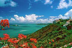 vista desde el conquistador puerto rico