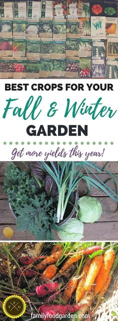 How to plant your fall and winter garden. Best crops for fall and winter gardening.