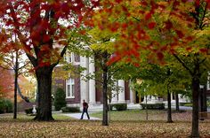 Bates College campus in Fall